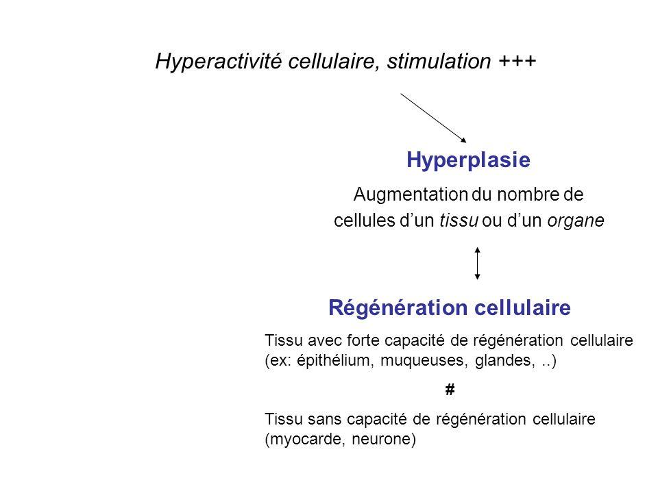 Régénération cellulaire
