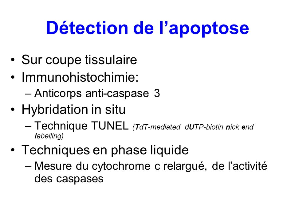 Détection de l'apoptose