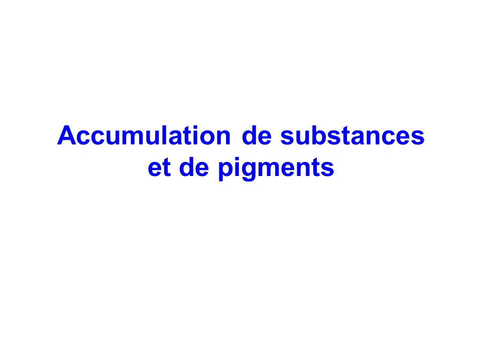 Accumulation de substances et de pigments