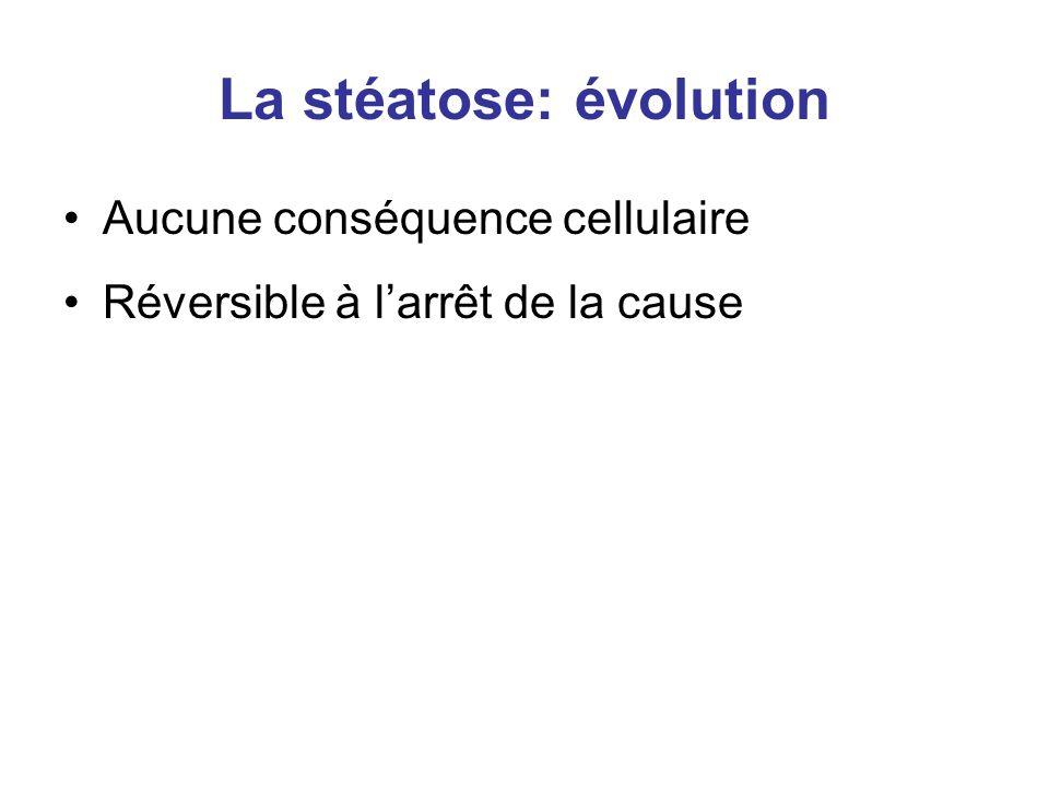 La stéatose: évolution