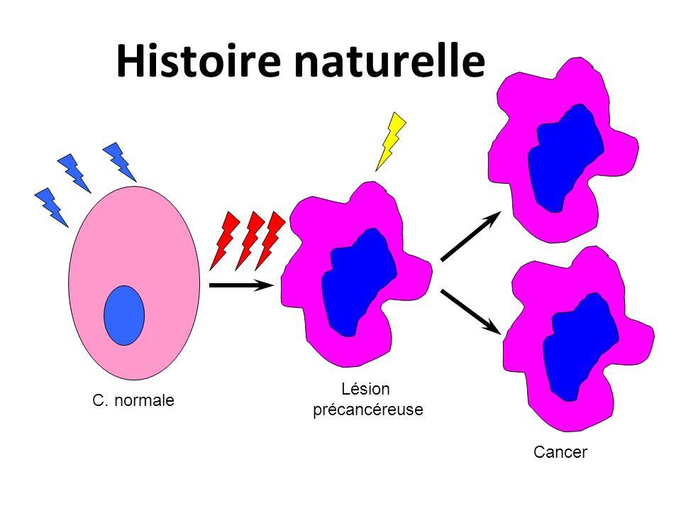 Histoire naturelle Cancer Lésion précancéreuse C. normale