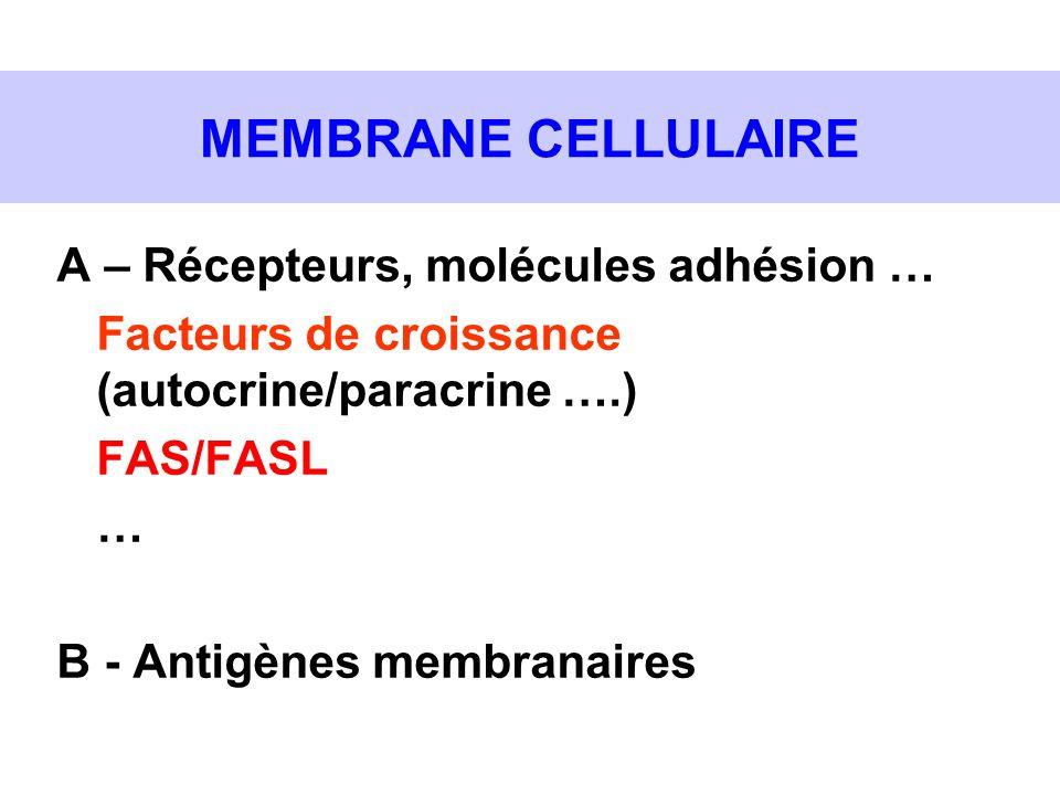 MEMBRANE CELLULAIRE A – Récepteurs, molécules adhésion …