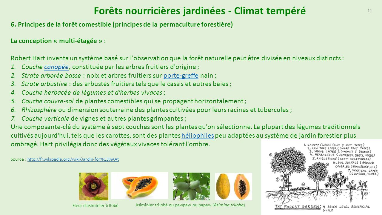 For ts nourrici res jardin es document actuellement en for Conception jardin fontrobert