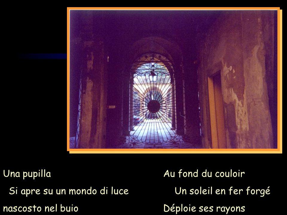 Una pupilla Si apre su un mondo di luce. nascosto nel buio. Au fond du couloir. Un soleil en fer forgé.