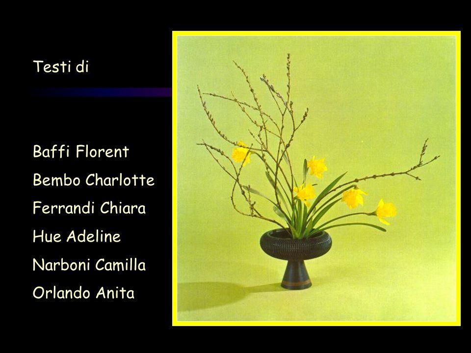 Testi di Baffi Florent Bembo Charlotte Ferrandi Chiara Hue Adeline Narboni Camilla Orlando Anita