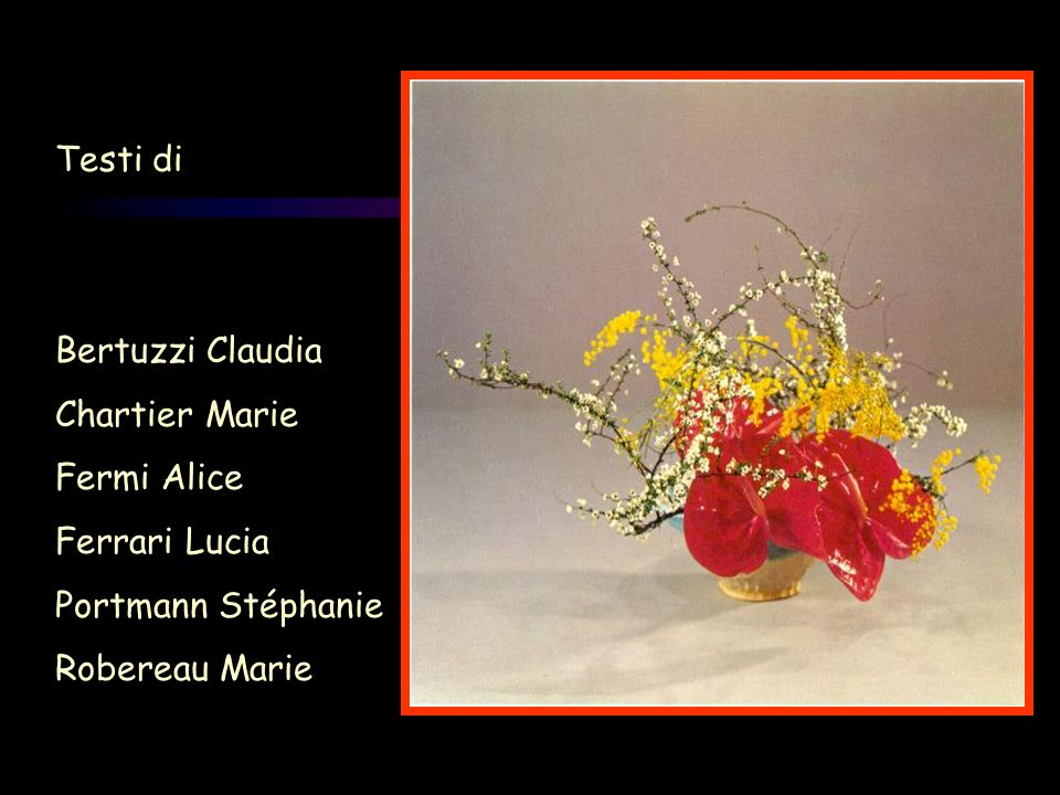 Testi di Bertuzzi Claudia. Chartier Marie. Fermi Alice.