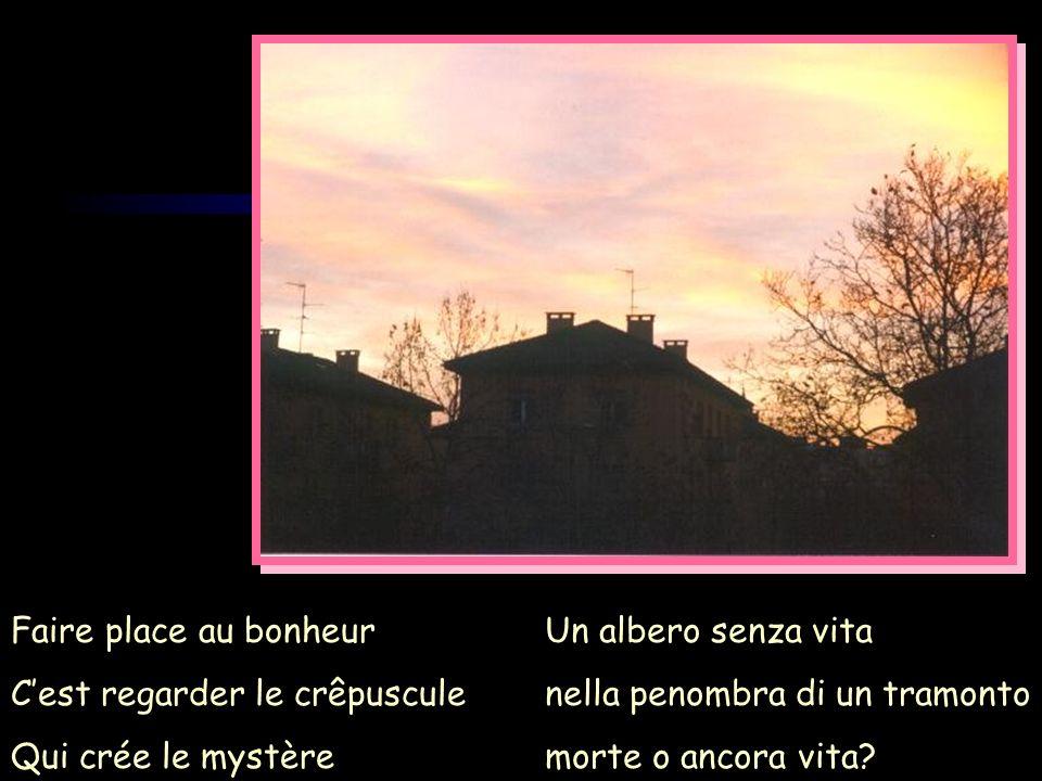 Faire place au bonheur C'est regarder le crêpuscule. Qui crée le mystère. Un albero senza vita. nella penombra di un tramonto.