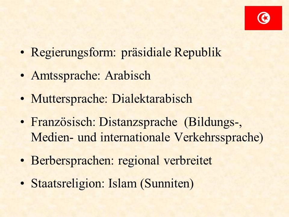 Regierungsform: präsidiale Republik