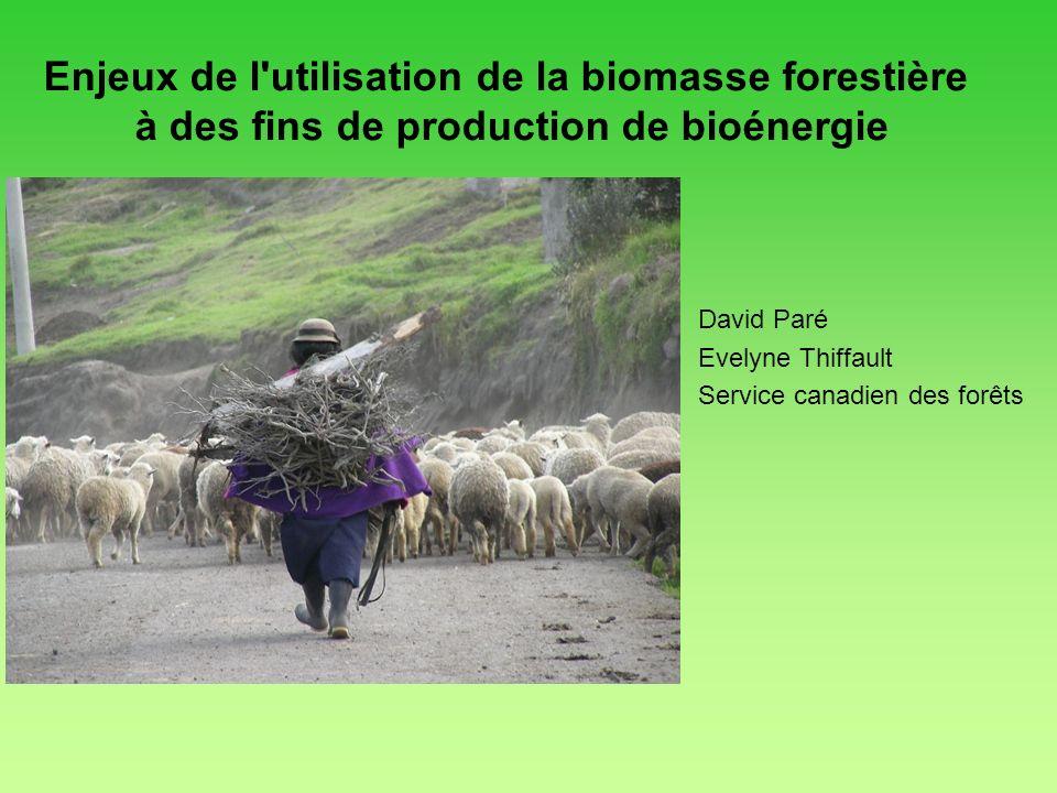 David Paré Evelyne Thiffault Service canadien des forêts