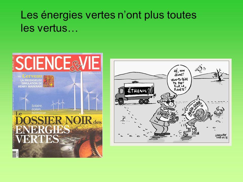 Les énergies vertes n'ont plus toutes les vertus…
