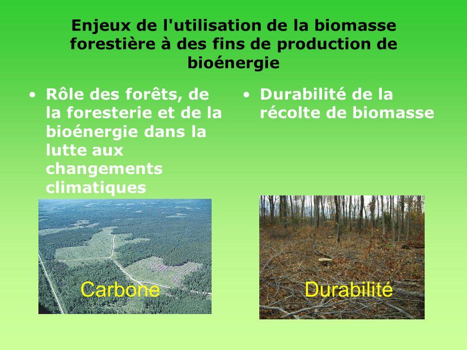 Enjeux de l utilisation de la biomasse forestière à des fins de production de bioénergie