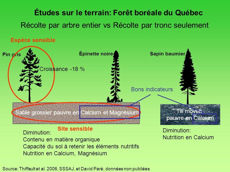 Études sur le terrain: Forêt boréale du Québec