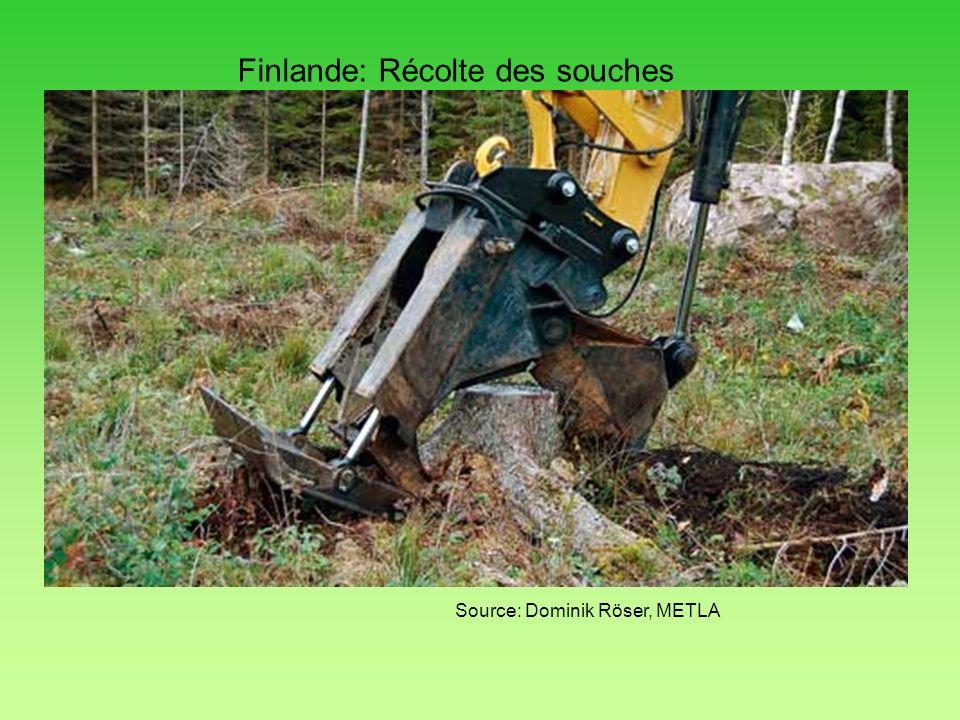 Finlande: Récolte des souches