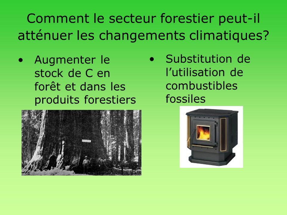 Comment le secteur forestier peut-il atténuer les changements climatiques