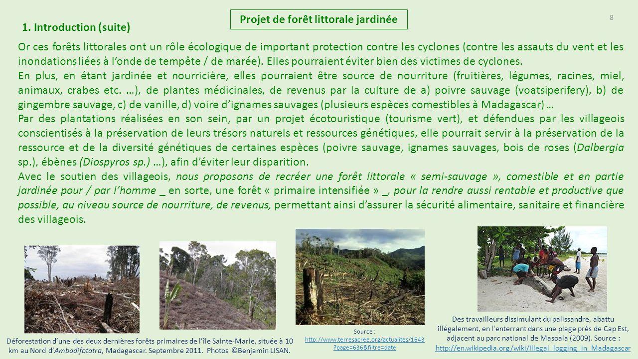 Projet de cr ation de for t littorale tropicale jardin e - La grange du bien etre vendegies au bois ...