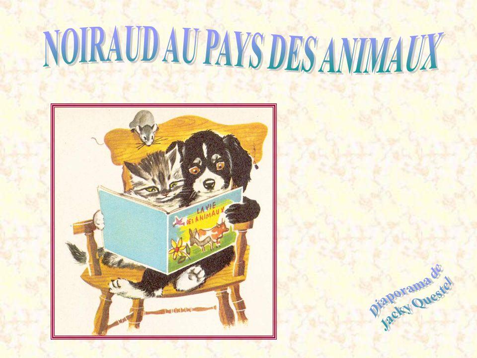 NOIRAUD AU PAYS DES ANIMAUX