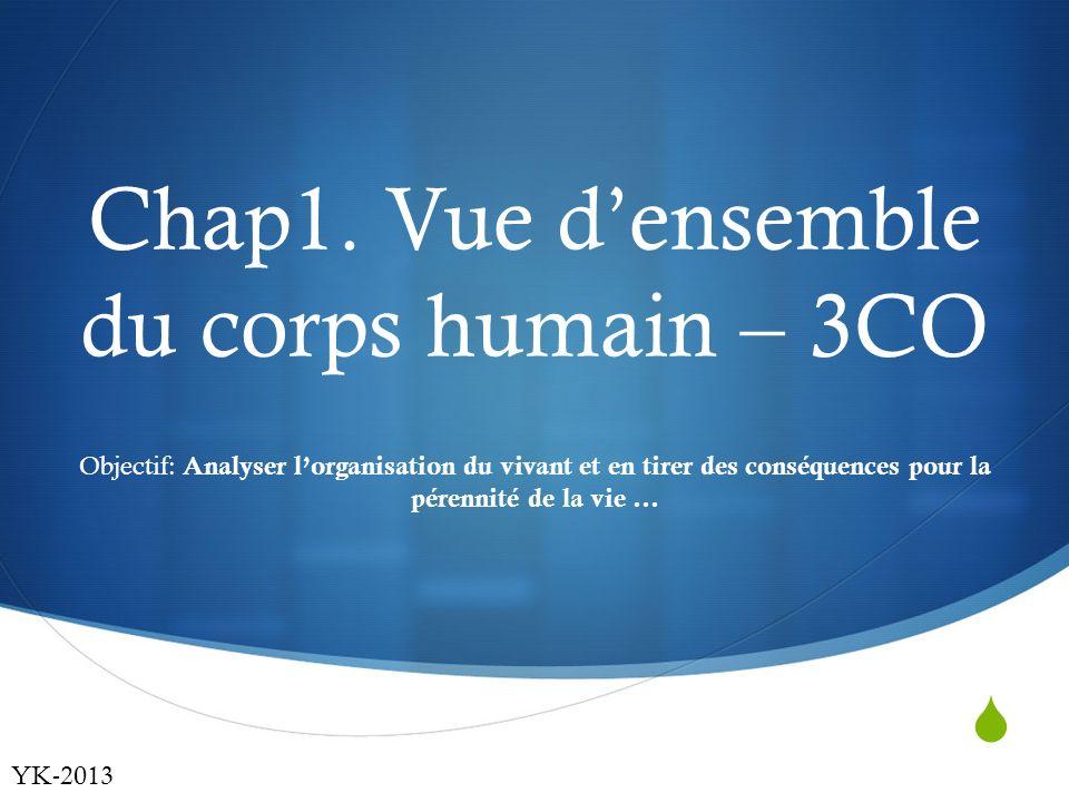 Chap1. Vue d'ensemble du corps humain – 3CO