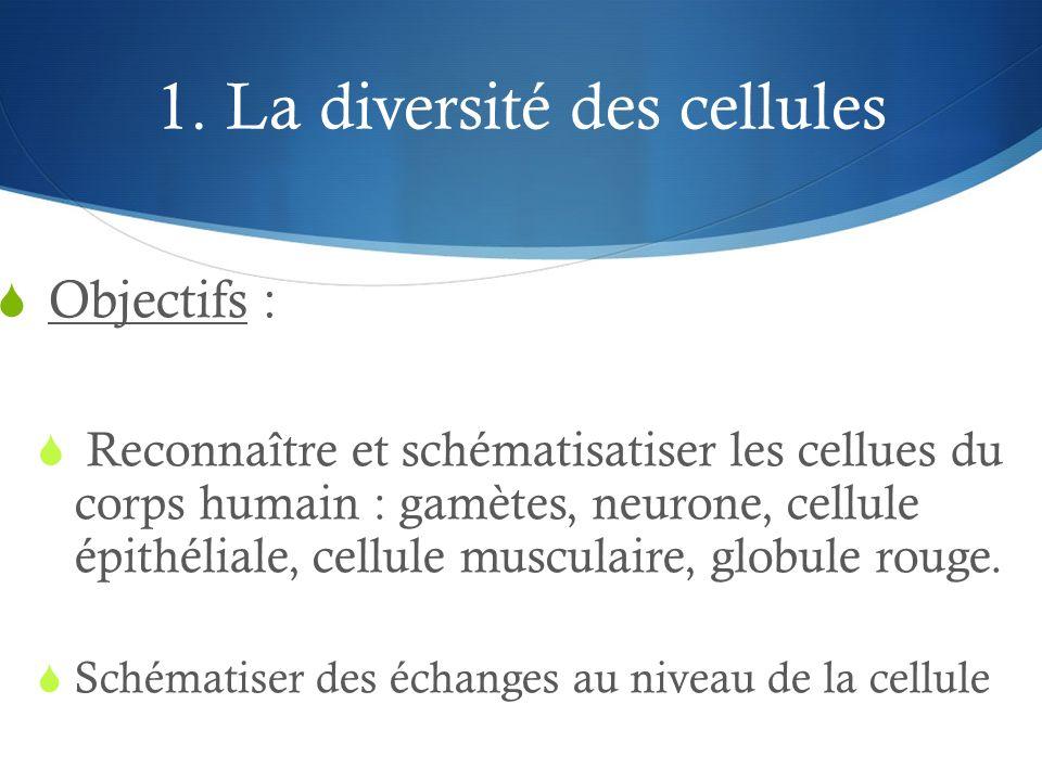 1. La diversité des cellules