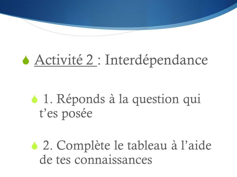 Activité 2 : Interdépendance