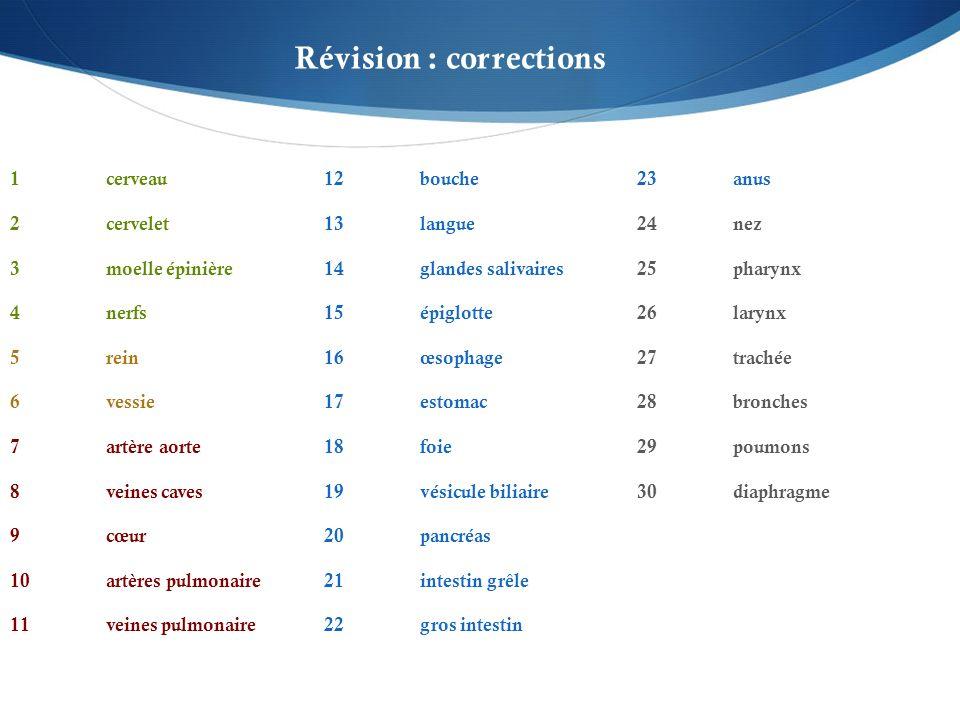 Révision : corrections