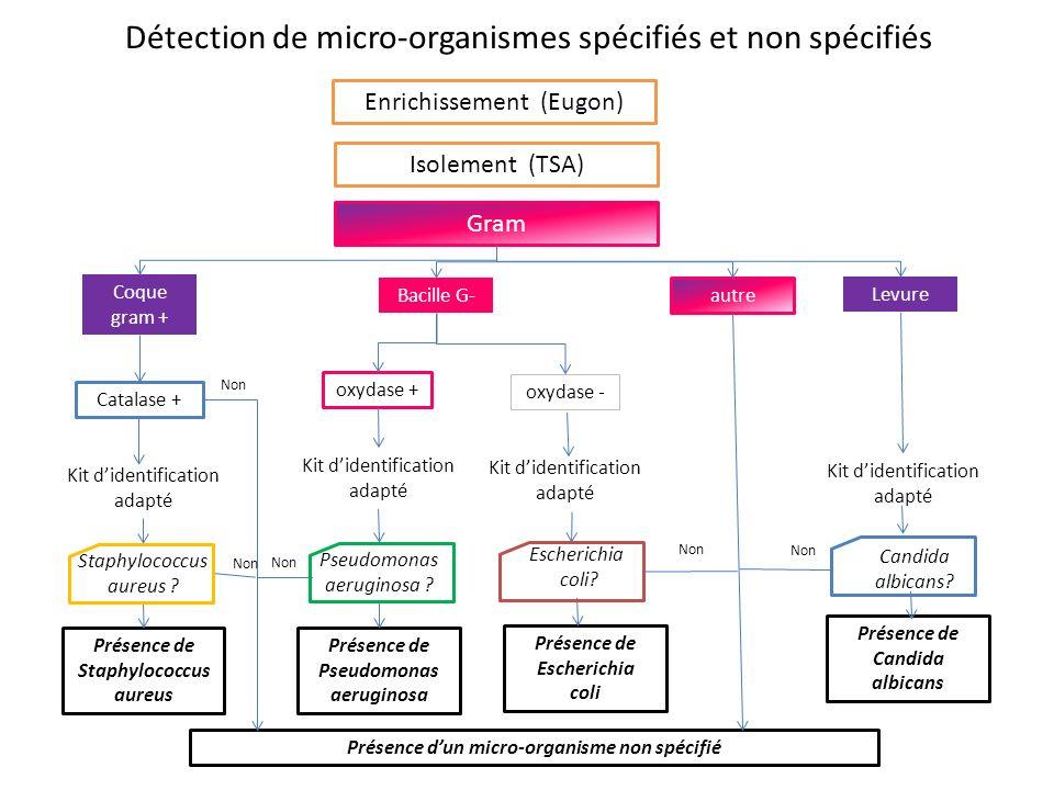 Détection de micro-organismes spécifiés et non spécifiés