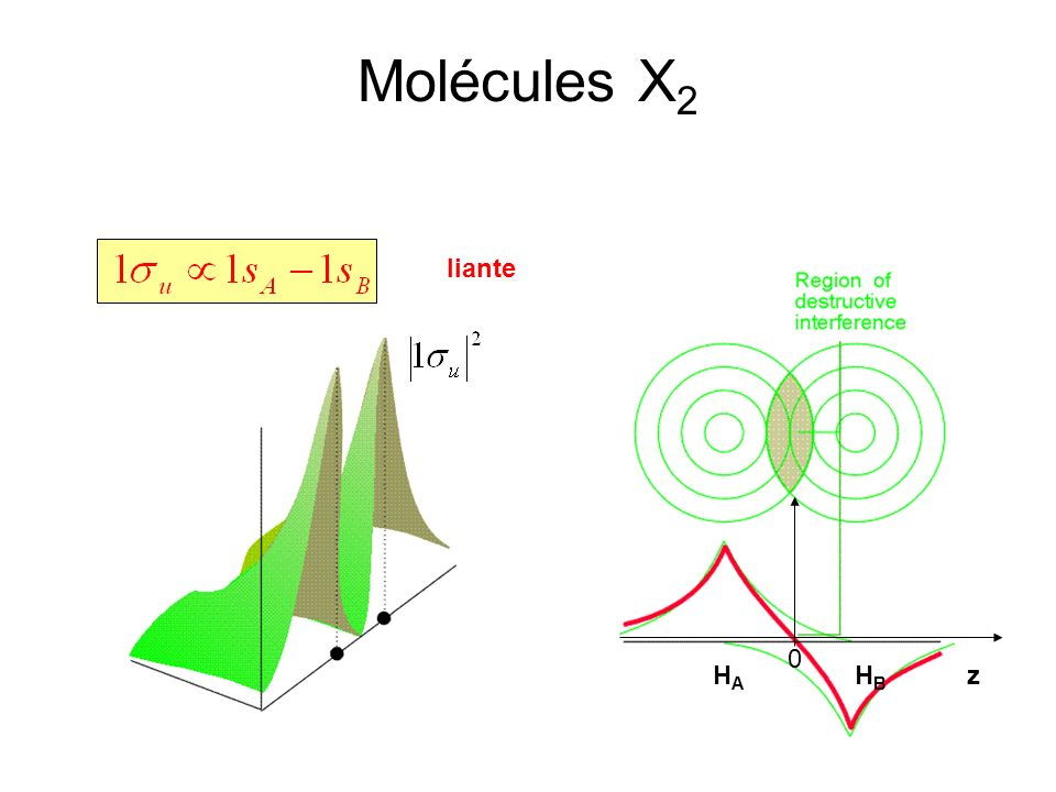 Molécules X2 liante HA HB z