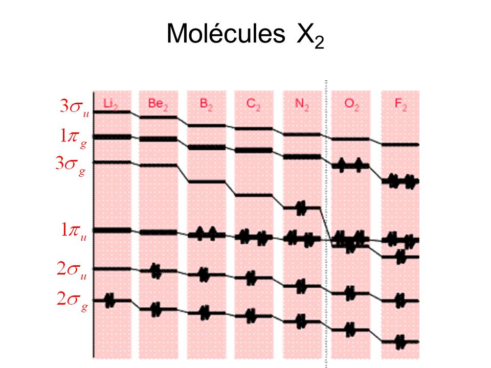 Molécules X2