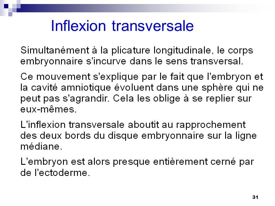 Inflexion transversale
