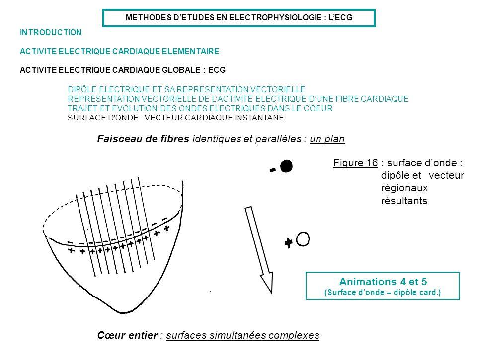 Faisceau de fibres identiques et parallèles : un plan