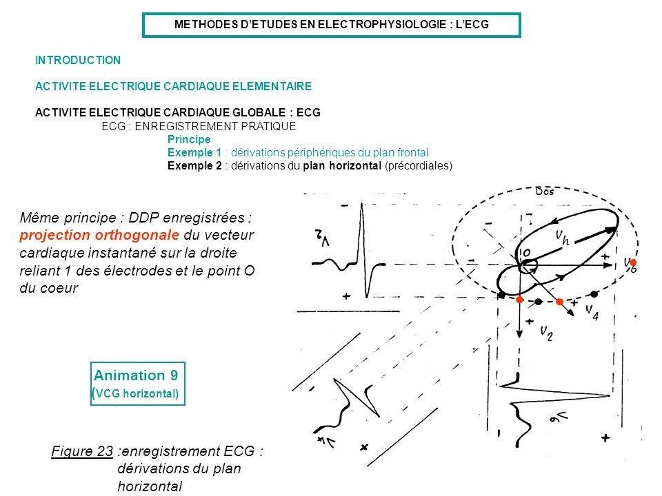 METHODES D'ETUDES EN ELECTROPHYSIOLOGIE : L'ECG
