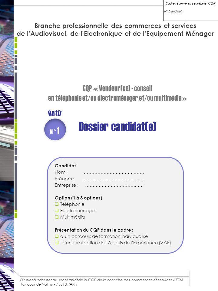 dossier candidat e  cqp  u00ab vendeur se  - conseil