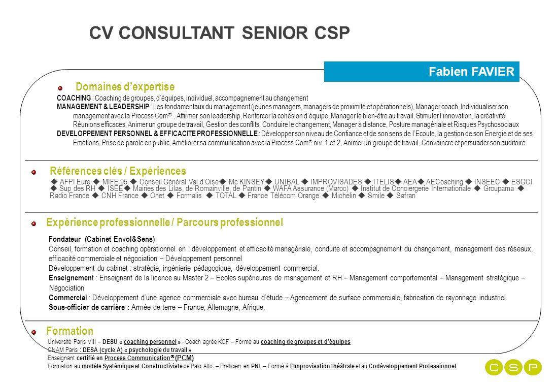 cv consultant senior csp