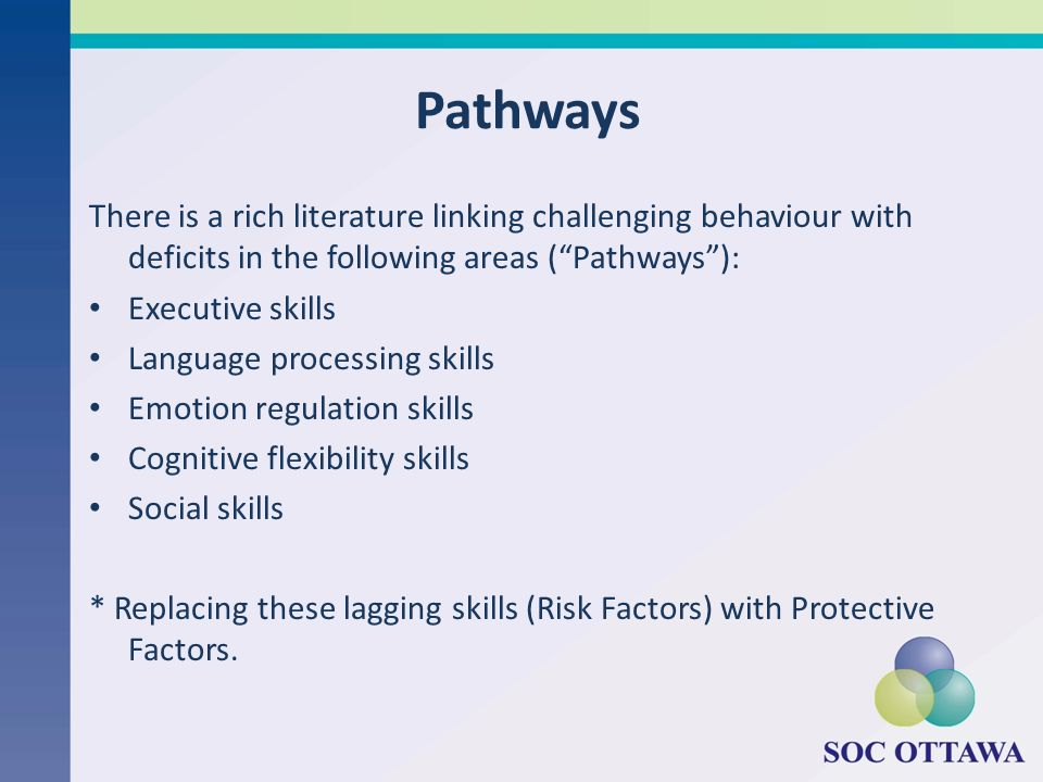 Pathways There is a rich literature linking challenging behaviour with deficits in the following areas ( Pathways ):