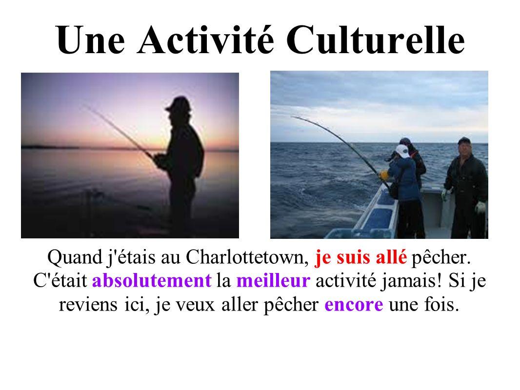 Une Activité Culturelle