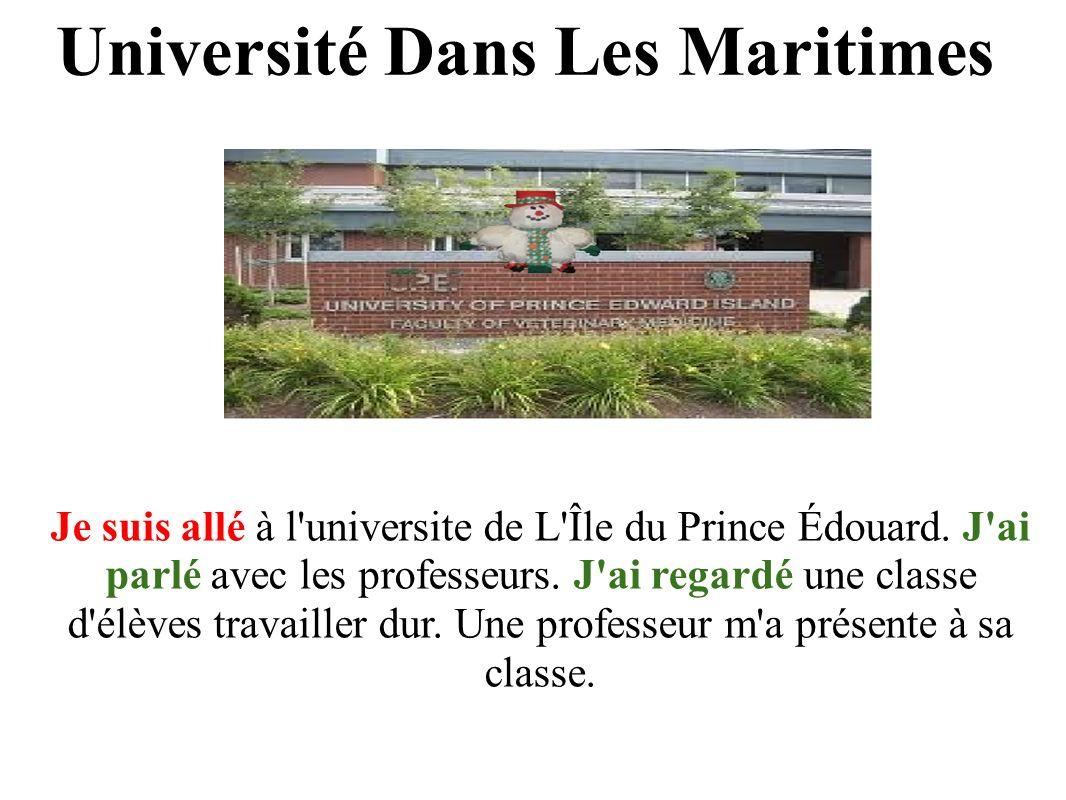 Université Dans Les Maritimes