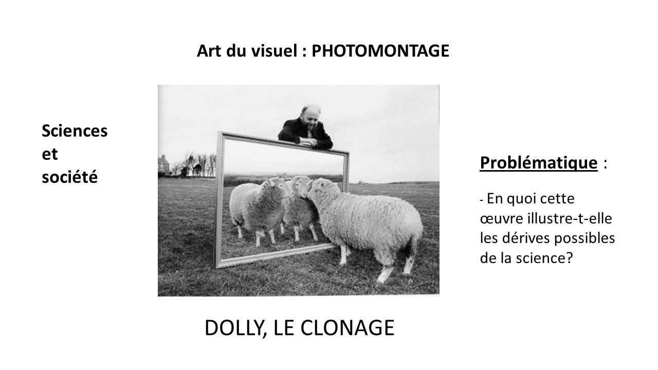 photomontage dolly