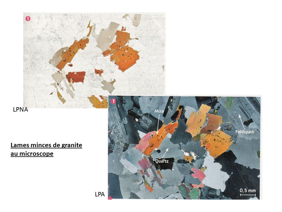 LPNA Lames minces de granite au microscope LPA