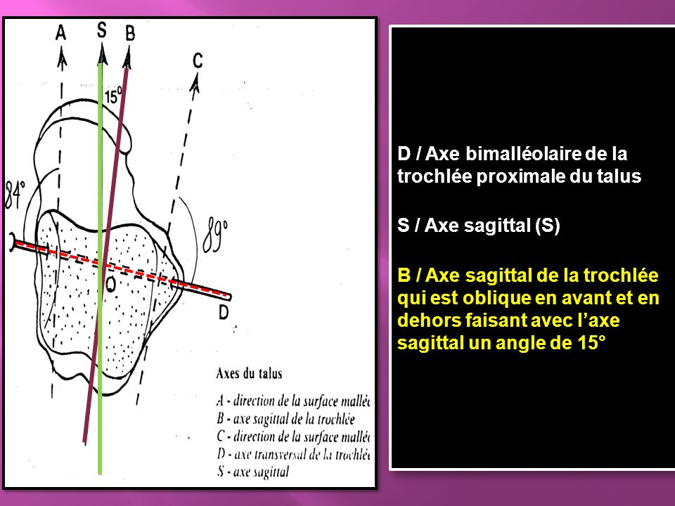 Definition axe proximal