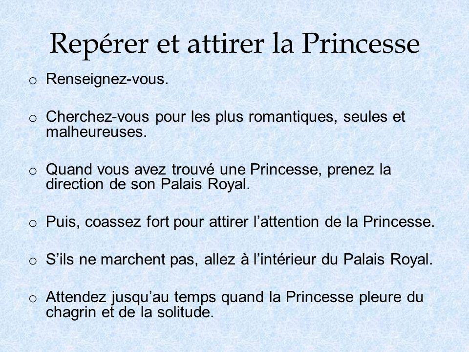 Repérer et attirer la Princesse