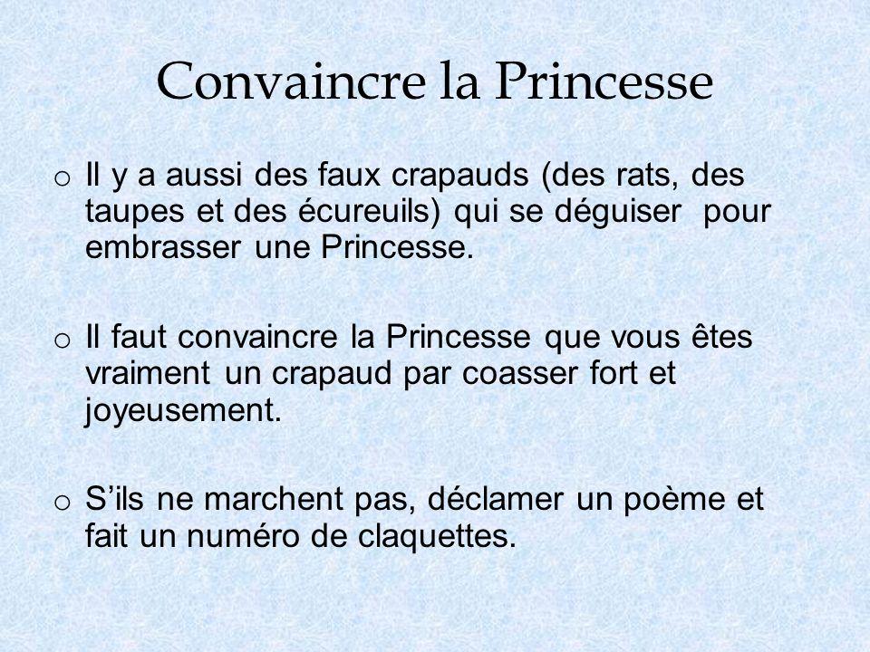 Convaincre la Princesse