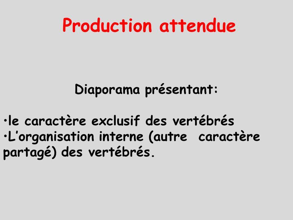 Diaporama présentant: