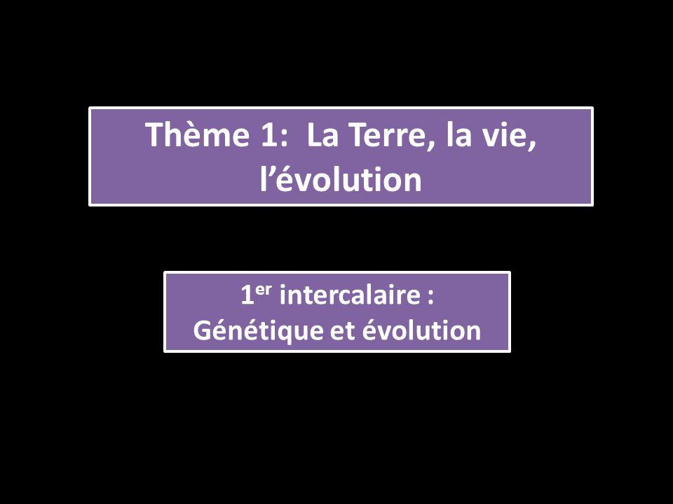 Thème 1: La Terre, la vie, l'évolution Génétique et évolution