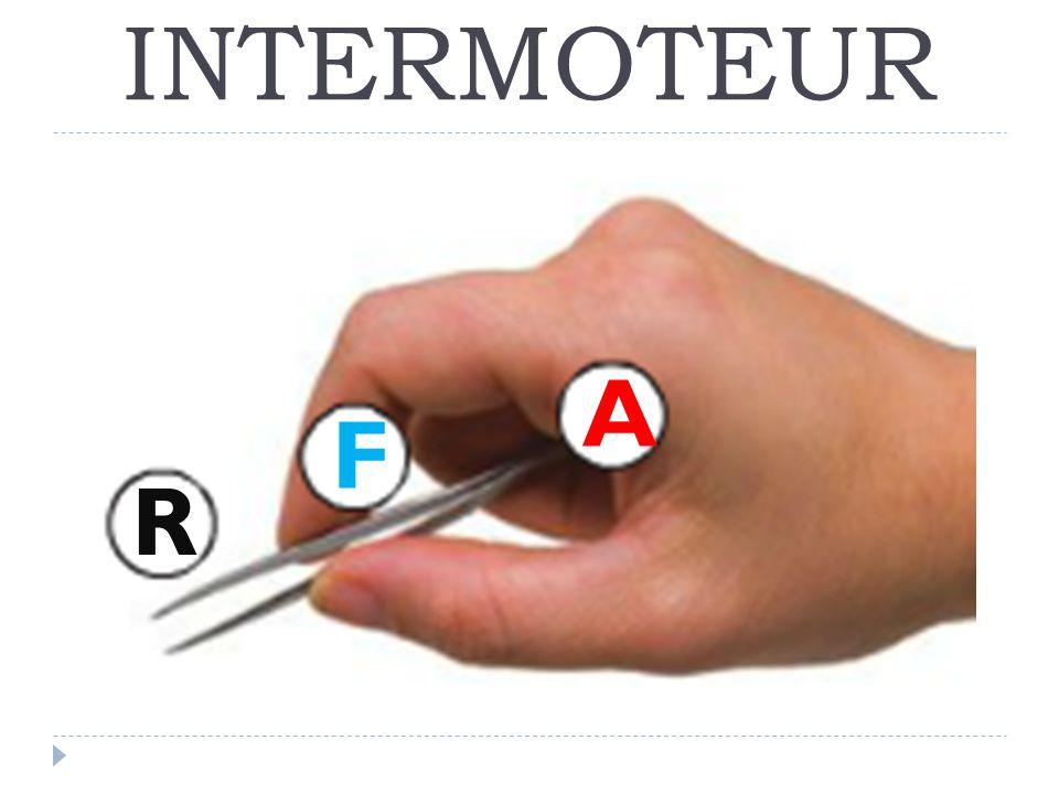 INTERMOTEUR A F R