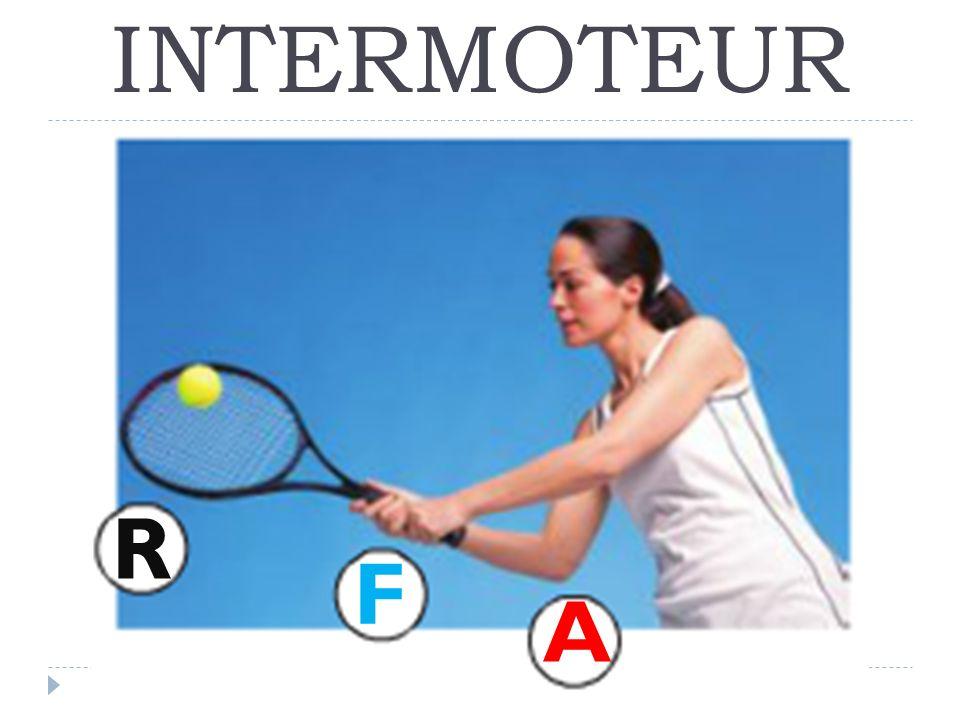 INTERMOTEUR R F A