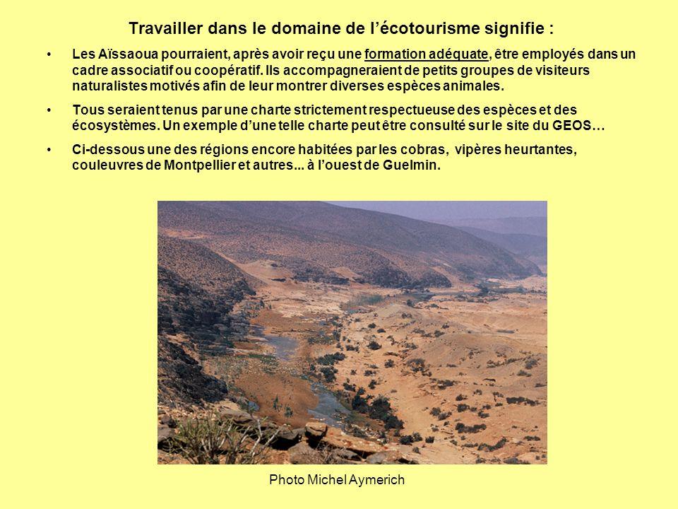Travailler dans le domaine de l'écotourisme signifie :