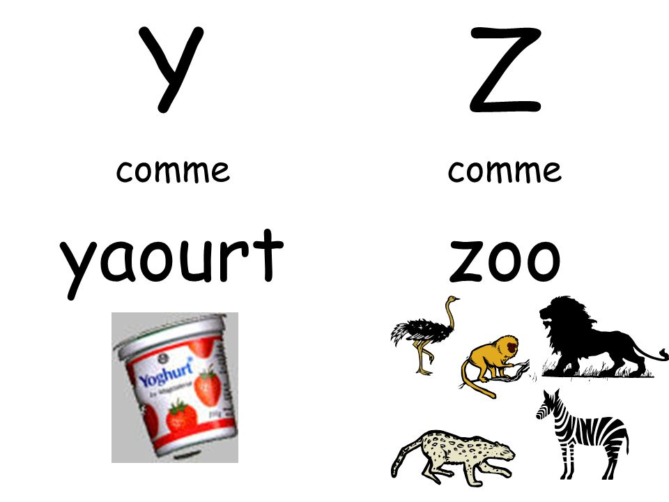 Y comme yaourt Z comme zoo