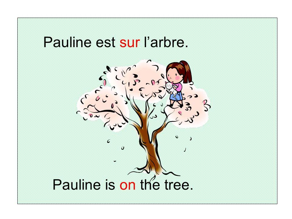 Pauline est sur l'arbre.