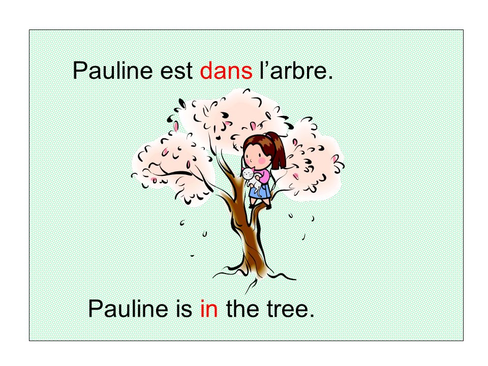 Pauline est dans l'arbre.