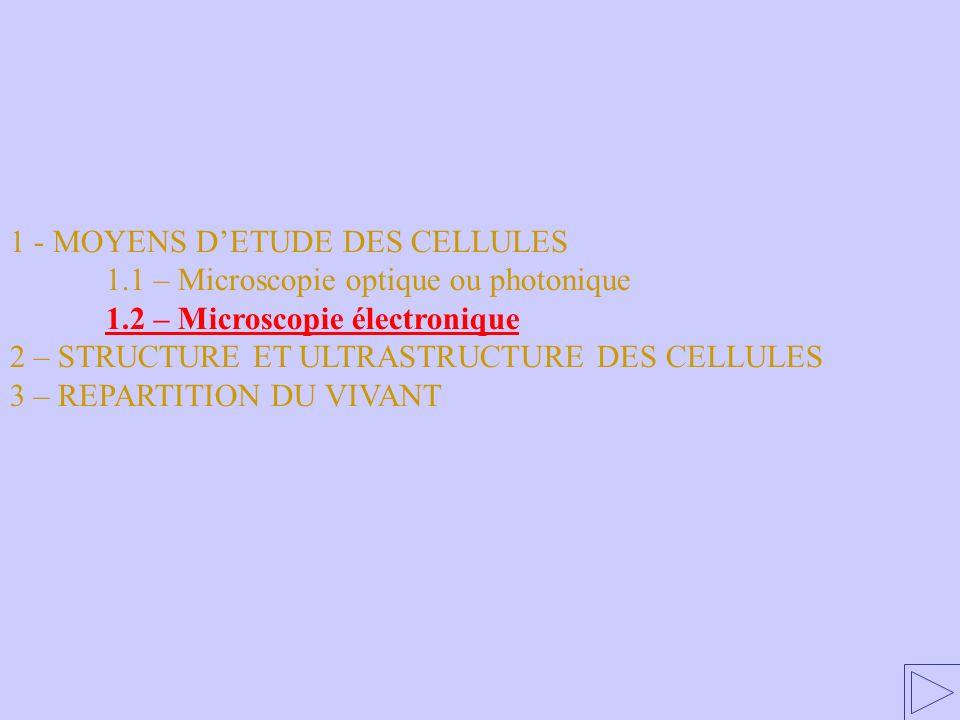 1.2 – Microscopie électronique