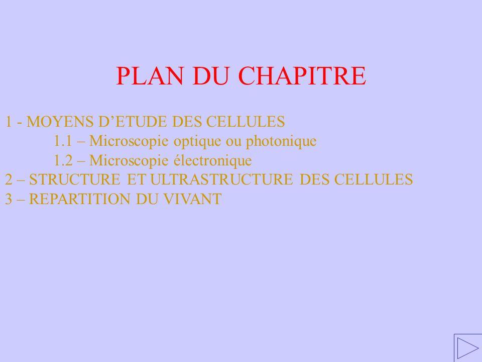 PLAN DU CHAPITRE 1 - MOYENS D'ETUDE DES CELLULES